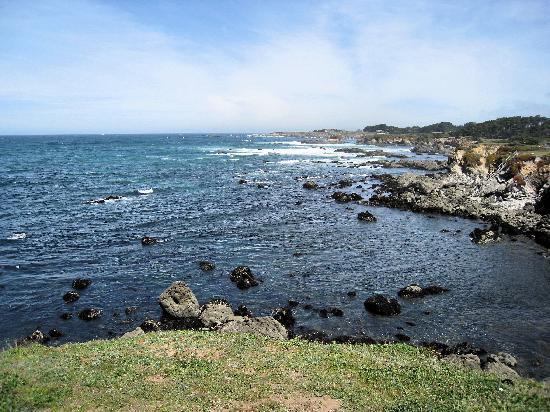 Mendocino Coast Botanical Gardens : Coastal views