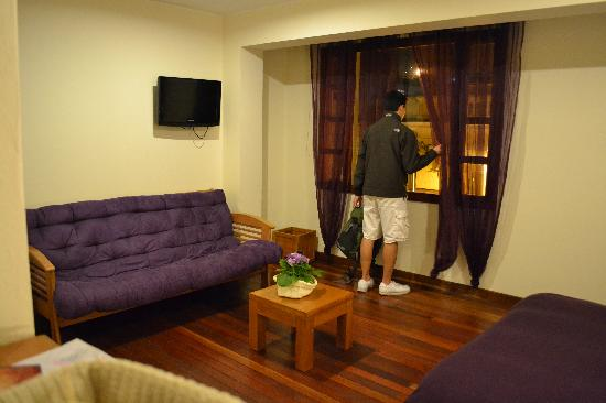 Hotel Casa Deco: Pullout couch and tv in room