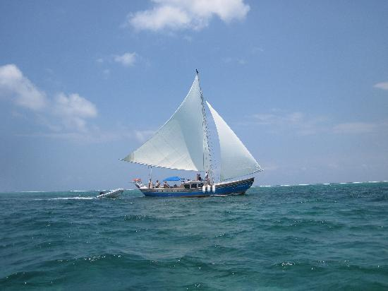 Sirena Azul Sailing Tours: I took a photo of the Sirena Azul as it sailed past me on my windsurfer