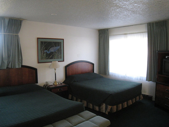 Viking Motel: Double Room
