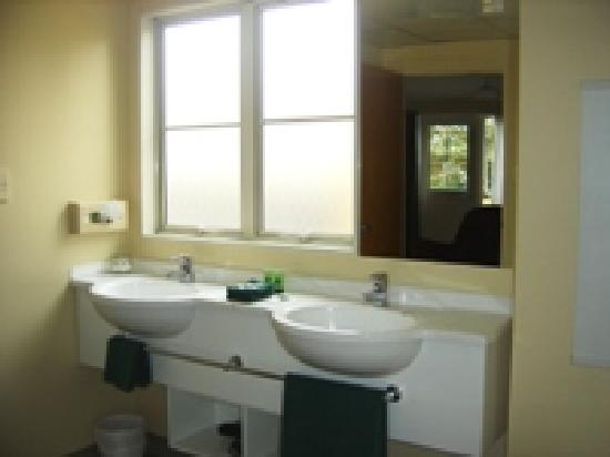 Birchwood Manor Motel: Bathroom