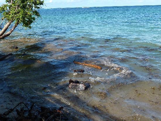 Fleur de sel mahé - état de la plage à marée haute