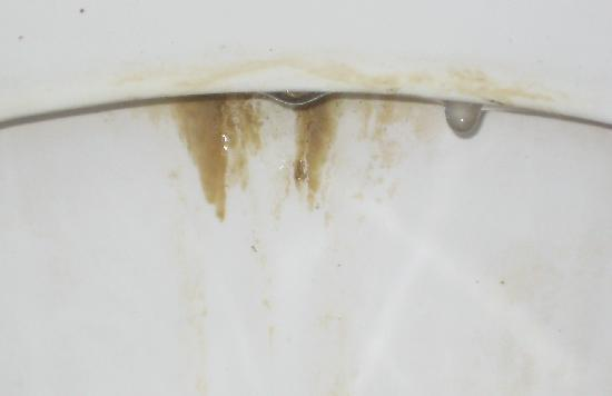Tamboti Ridge Bed & Breakfast : Rather filthy