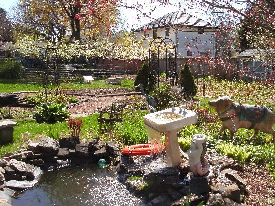 Orchard View Bed & Breakfast: a funky garden pond, I love it!