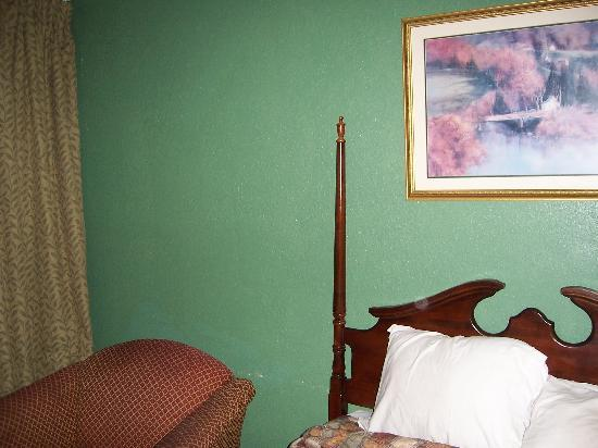 Travelodge Tampa/ West Of Busch Gardens: Dark furniture, dark wall