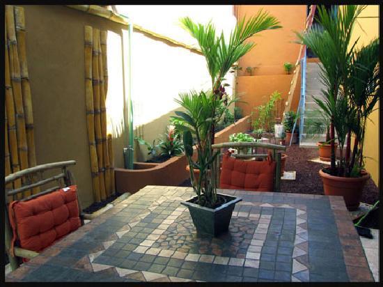 Los Saules : Terrace
