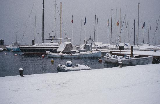 Il Giardino delle Esperidi: Il porto di Bardolino con la neve