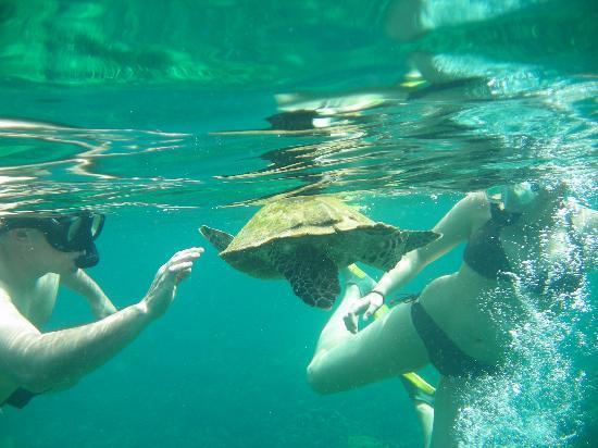 Andilana Beach Resort: Parco marino di Nosy Tanikely