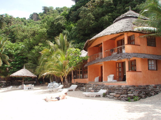 Apo Island Beach Resort Golden Cowrie Looks So Pretty