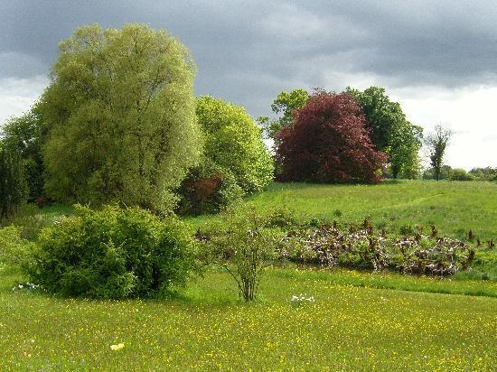 Alnwick, UK: Arboretum