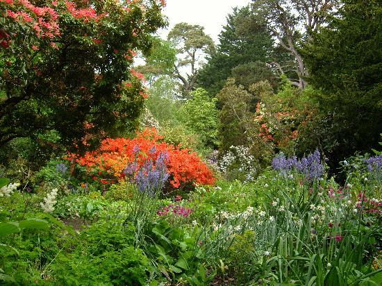 Alnwick, UK: Beautiful gardens to walk round.