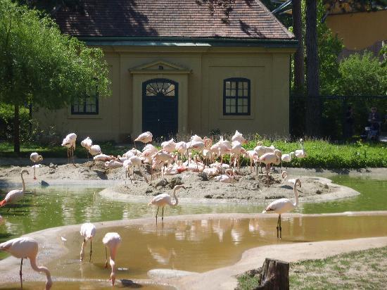 Beste Spielothek in Tiergarten finden
