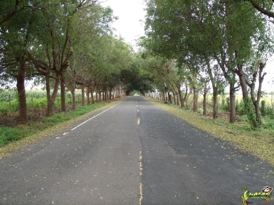 Guarare, Panama: Vía de Acceso