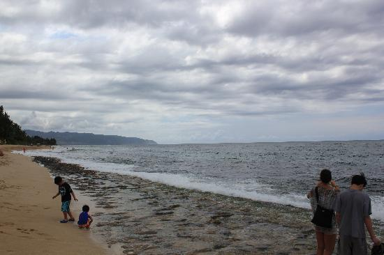 Laniakea Beach: Our first visit- no turtles