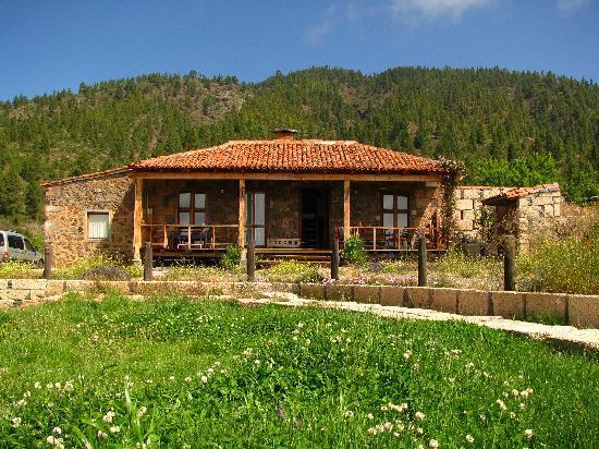 Casas Rurales Ecologicas del Pinar: Entrada a la casa