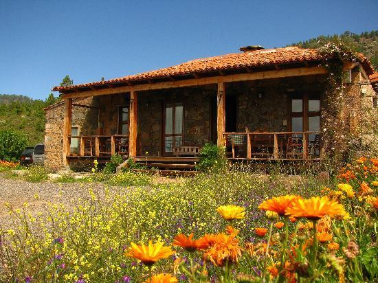 Гранадилья-де-Абона, Испания: Muchas flores por todos lados
