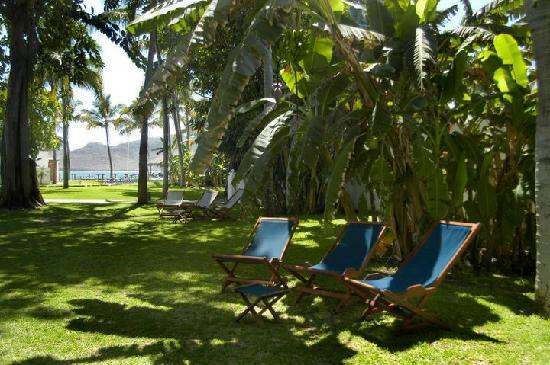 Ramada Resort Mazatlan: Jardines