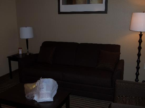 "Comfort Suites DFW Airport: ""living area"" of our king room"