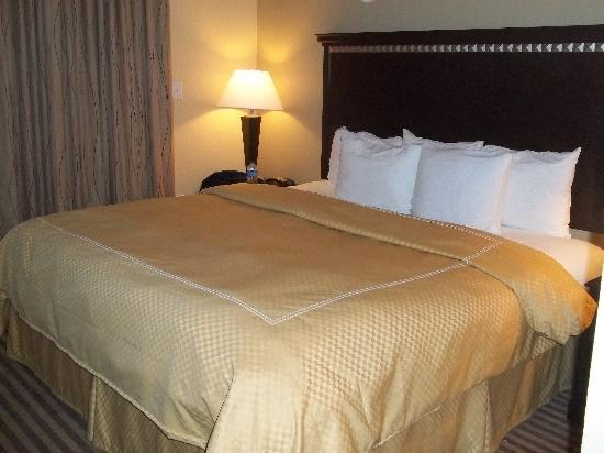 Comfort Suites DFW Airport: king bed