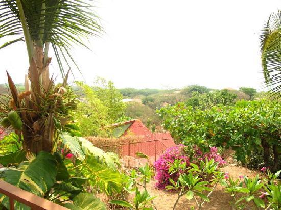 Casa Bambora 사진
