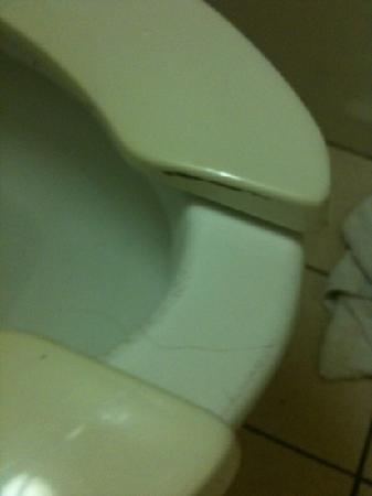 Country Hearth Inn & Suites Gainesville: I had to clean the urine stains but didn't have cleaner to get the rest off.