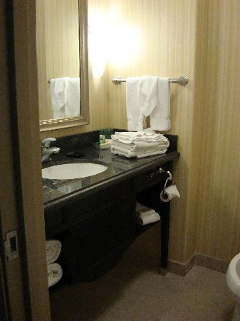 Holiday Inn & Suites Waco Northwest: Bathroom