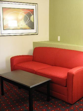 Comfort Suites: Sitting Area