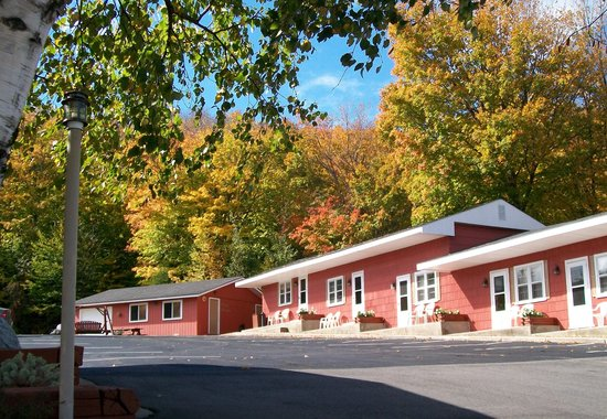 Terrace Motel: Fall... summer's activities, plus changing leaves... and hunting toward the holidays