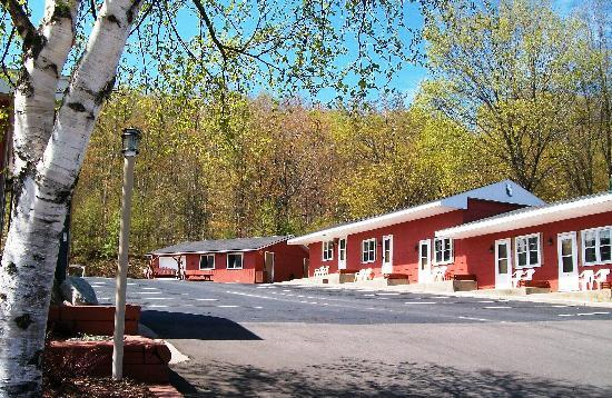 Terrace Motel: Spring... snow-melt fed waterfalls, greening woods, wildflowers