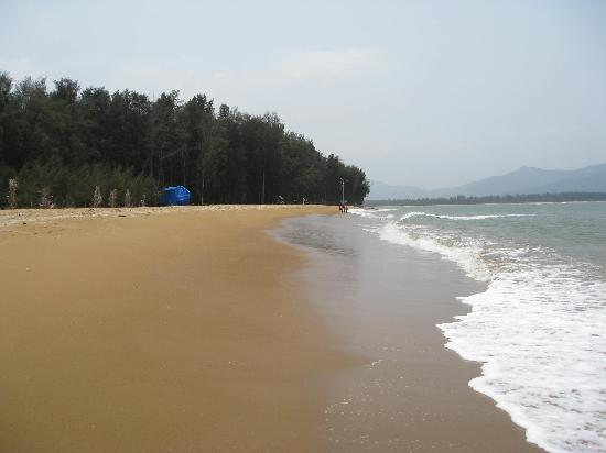 Jungle Lodges Devbagh Beach Resort Prices