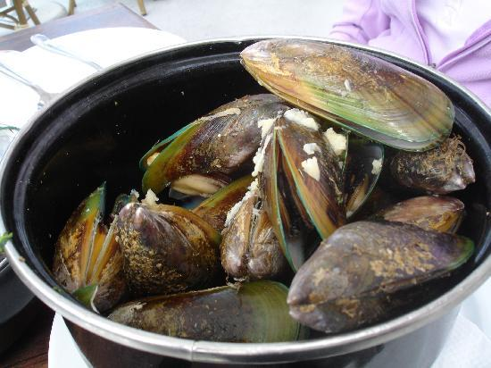De Fontein Belgian Beer Cafe : Pot of New Zealand green mussels - first and one of the best of many places I had these in NZ