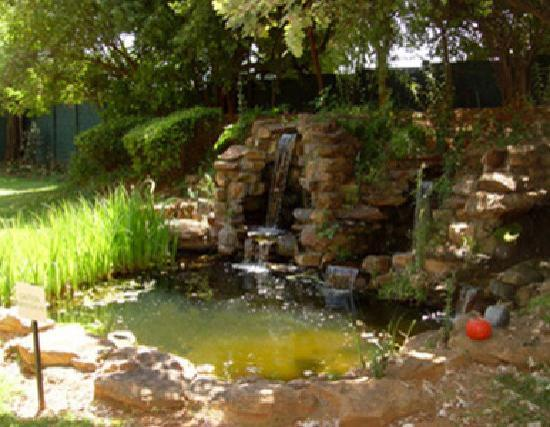 Sandton Bed and Breakfast: Our water feature is tranquil and relaxing