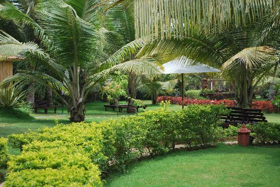 Santana Beach Resort: Lush Green ..Indeed