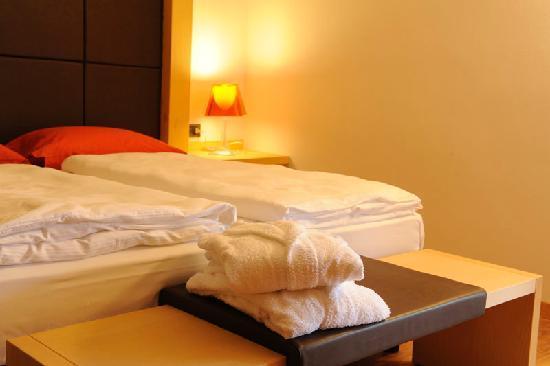 Corona Dolomites Hotel Andalo: Le nostre stanze Orso Bruno