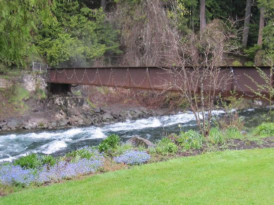 Belknap Hot Springs Lodge and Gardens: The McKenzie river/footbridge to gardens