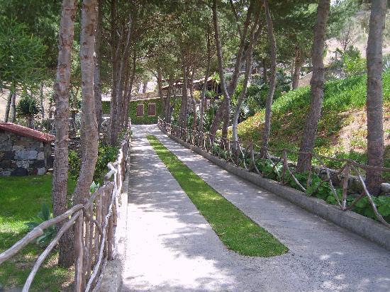 Hotel Quinta Do Serrado: Hotel driveway