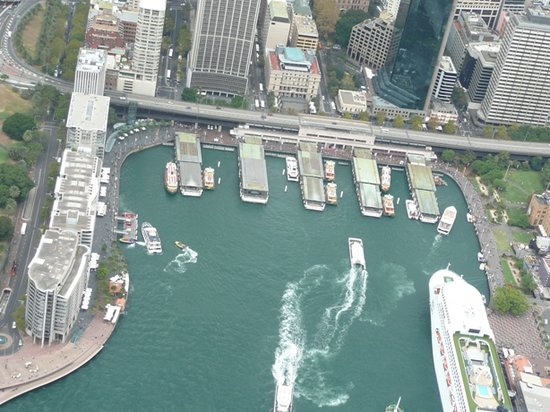 Blue Sky Helicopters: circular quay from helicopter