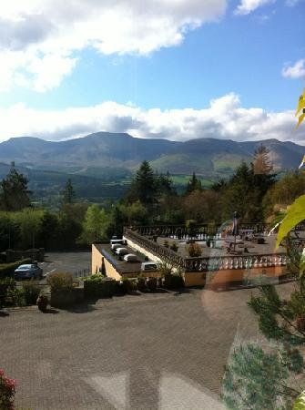 Aherlow House Hotel & Lodges: view from room