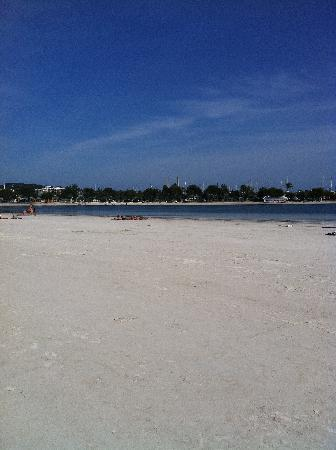 Zafiro Tropic : Alcudia beach 2 min walk from hotel