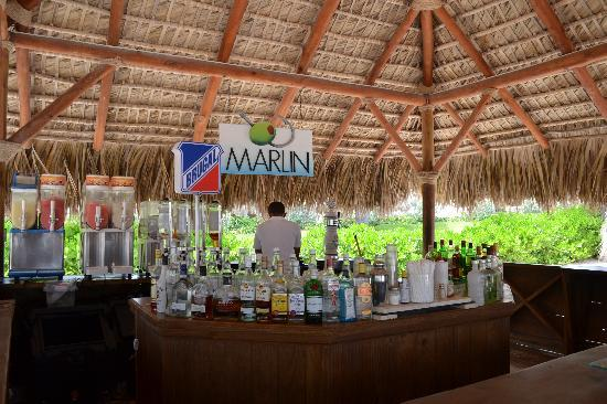 Secrets Royal Beach Punta Cana: Beach Bar