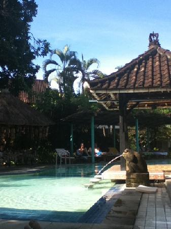 Puri Kelapa Garden Cottages: relaxing by the pool