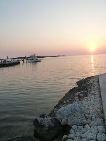 Island Bay Resort : Sunset view of the water from the base of the dock