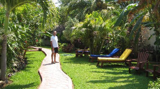 Hotel Casa Barbara: Garden