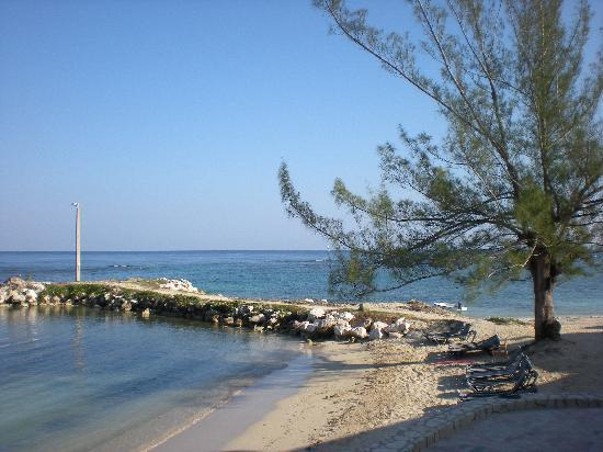 Sunscape Splash Montego Bay: view from resort grounds
