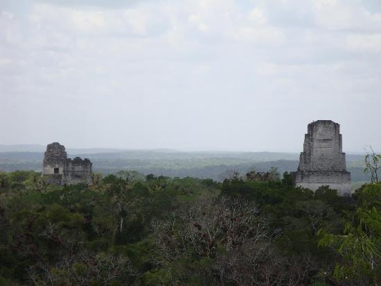 Tikal National Park, Guatemala: View from Temple 3