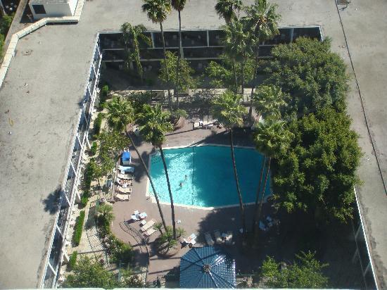 Sheraton Universal Hotel The pool The pool