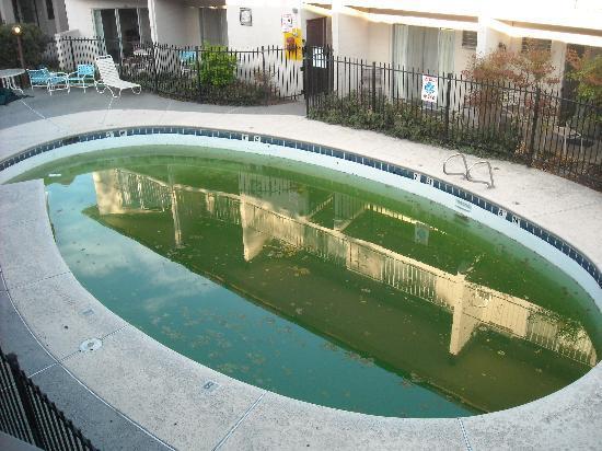 Walla Walla, Waszyngton: Pool