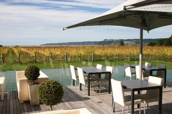 The Landing: Great Wineries