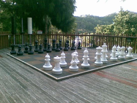 Club Paihia: Giant Chess Set to Play With