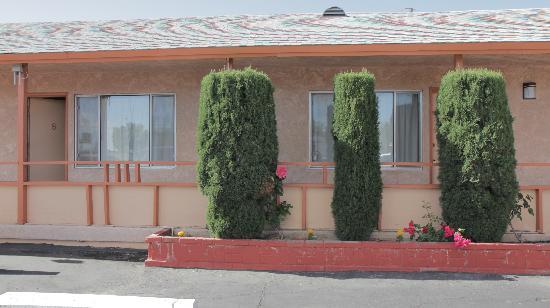 Desert Inn: desert roses